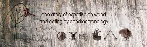 Home Page - Laboratory of expertise on wood and dating by dendrochronology - Dendrochronology Consulting