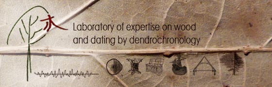 Laboratory of expertise on wood and dating by dendrochronology - Dendrochronology Consulting